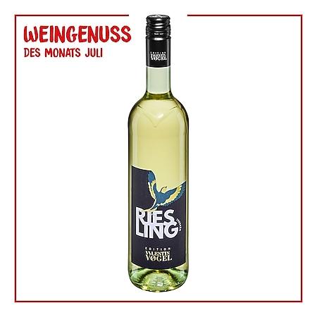 Edition Valentin Vogel Riesling Qualitätswein Pfalz trocken 13,0 % vol 0,75 Liter - Bild 1