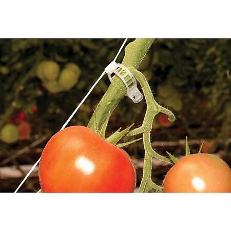 Rion Tomatenrank-Kit, 6 Stk. - Bild 1