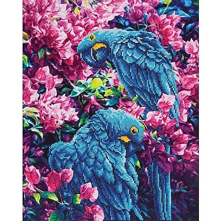 Diamond Dotz Papagei 42 x 52 cm - Bild 1